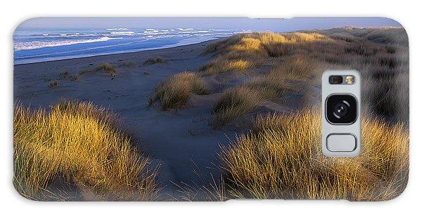 Sunlight On The Beach Grass Galaxy Case