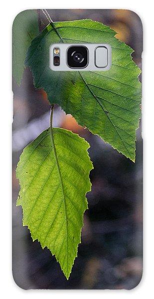 Sunlight Through Birch Leaf Branch Galaxy Case