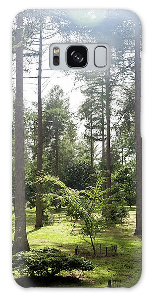 Galaxy Case featuring the photograph Sunlight Through The Trees by Scott Lyons