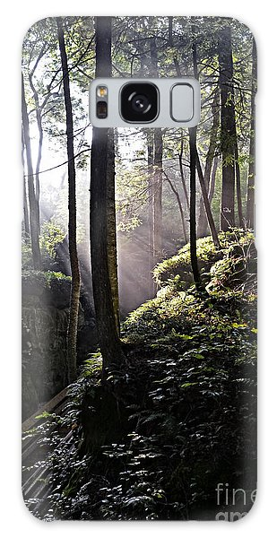 Sunlight Through Trees At Beartown State Park 3129c Galaxy Case