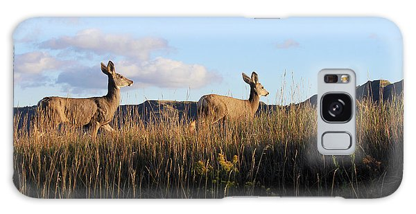 Sunlit Deer  Galaxy Case