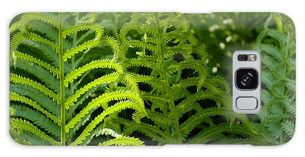 Sunlit Fern Galaxy Case