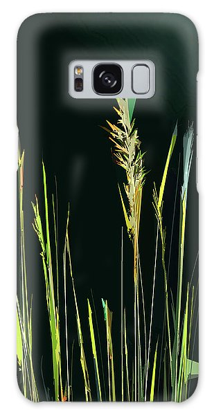 Sunlit Grasses Galaxy Case