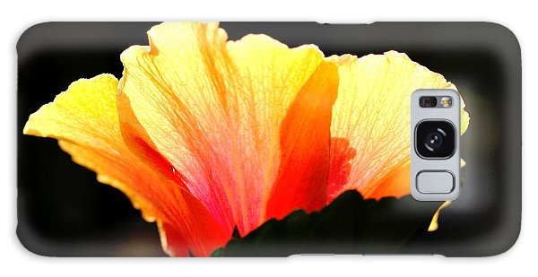 Sunlit Hibiscus Galaxy Case by Diane Merkle