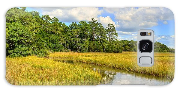 Sunlit Marsh Galaxy Case by Kathy Baccari