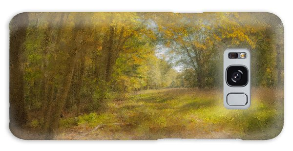 Sunlit Meadow In Borderland Galaxy Case