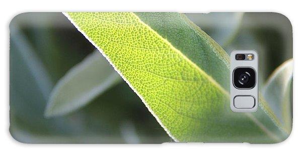 Sunlit Sage Leaf Galaxy Case by Elizabeth Sullivan