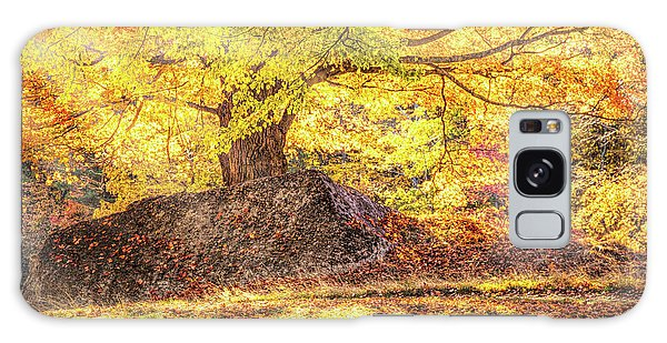 Sunny Afternoon On Autumn Hill Galaxy Case