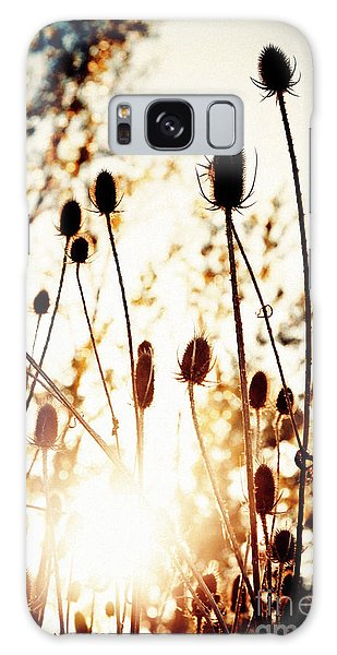 Sunny Afternoon Galaxy Case