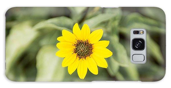 Sunny Flower Galaxy Case