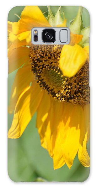 Sunny One Galaxy Case by Teresa Tilley