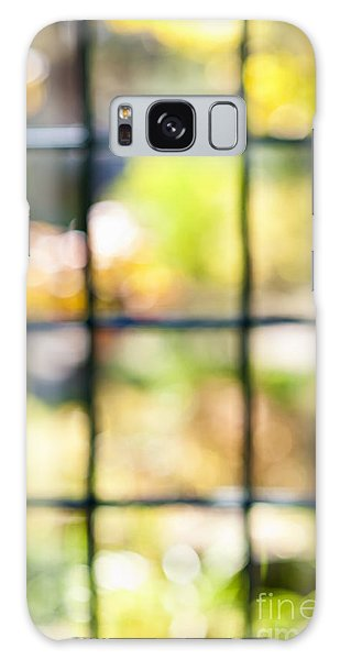 Window Galaxy Case - Sunny Outside by Elena Elisseeva