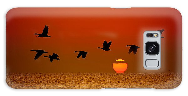 Canada Goose Galaxy Case - Sunrise Flight by Steve Gadomski