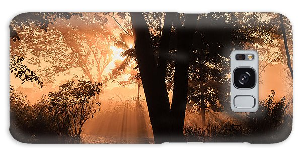 Sunrise In The Marsh 3 Galaxy Case