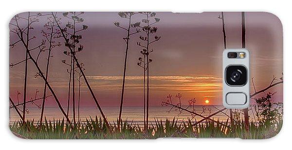Sunrise Palm Blooms Galaxy Case
