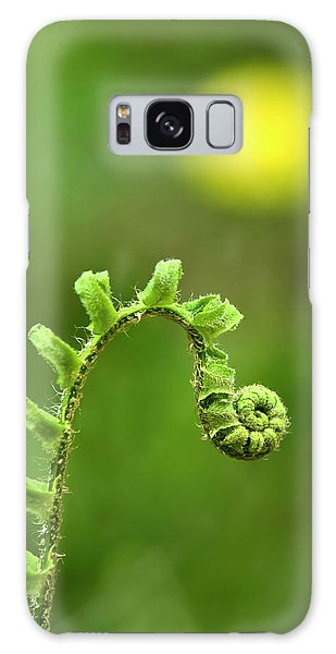 Sunrise Spiral Fern Galaxy Case