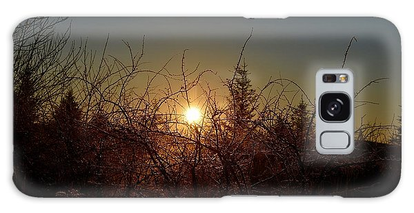 Sunrise Thru The Brush Galaxy Case