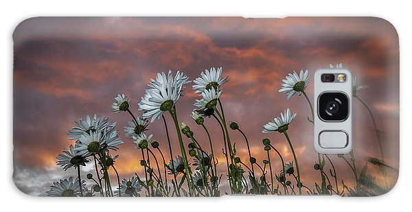Sunset And Daisies Galaxy Case