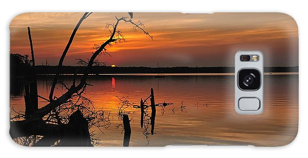 Galaxy Case featuring the photograph Sunset And Heron by Angel Cher