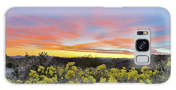 Sunset And Primrose Galaxy Case