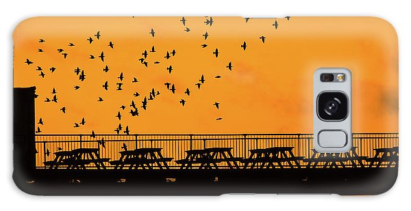Sunset And Starlings In Aberystwyth Wales Galaxy Case