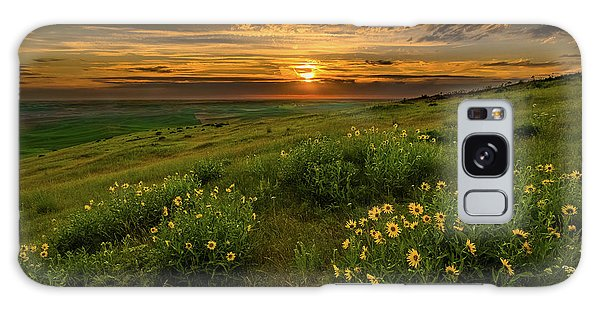 Sunset At Steptoe Butte Galaxy Case