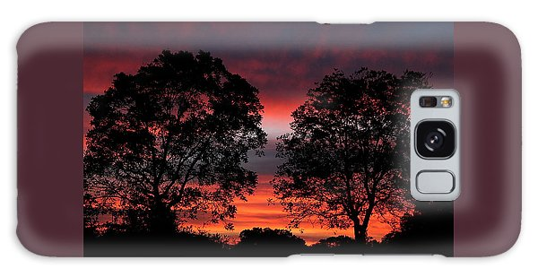 Sunset Behind Two Trees Galaxy Case by Sheila Brown