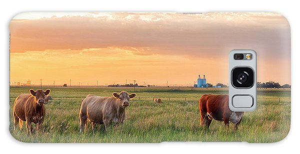 Sunset Cattle Galaxy Case