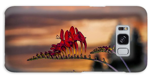 Sunset Crocosmia Galaxy Case