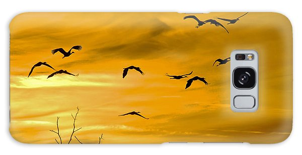 Galaxy Case featuring the photograph Sunset Fliers by Wanda Krack