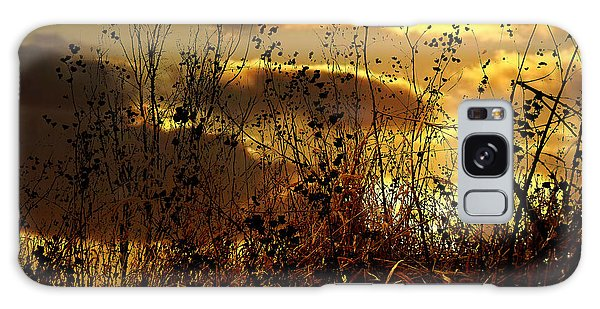 Sunset Grasses Galaxy Case