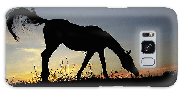 Sunset Horse Galaxy Case