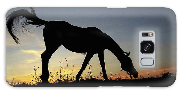 Sunset Horse Galaxy Case