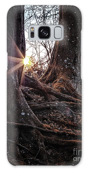 Sunset In The Woods Galaxy Case