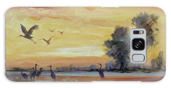 Sunset On The Marshes With Cranes Galaxy Case