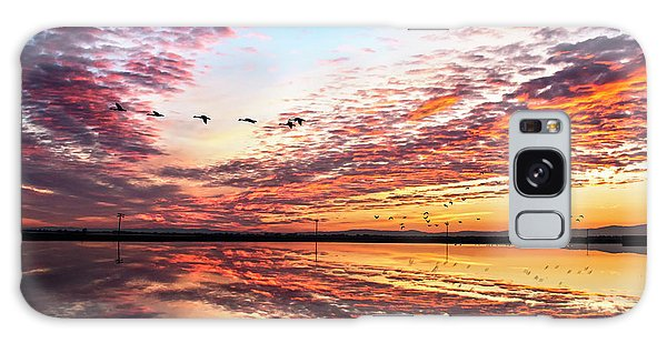 Sunset On The Pacific Flyway Galaxy Case