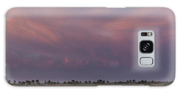Sunset Over The Wetlands Galaxy Case