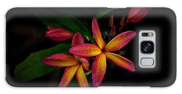 Sunset Plumerias In Bloom #2 Galaxy Case