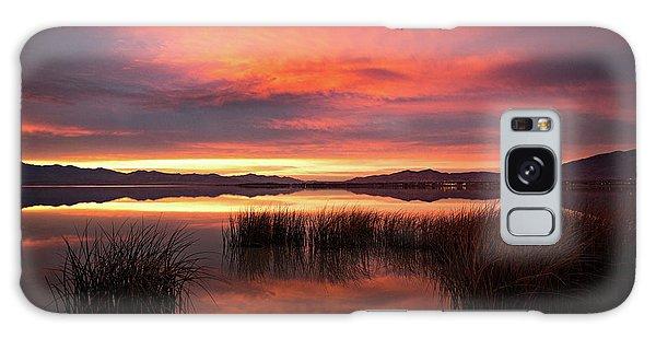 Sunset Reeds On Utah Lake Galaxy Case