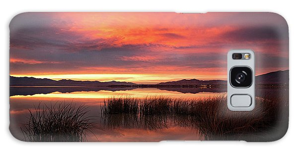 Galaxy Case featuring the photograph Sunset Reeds On Utah Lake by Wesley Aston