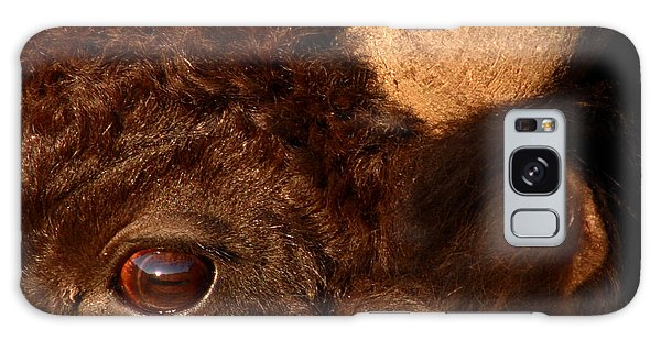 Sunset Reflections In The Eye Of A Buffalo Galaxy Case