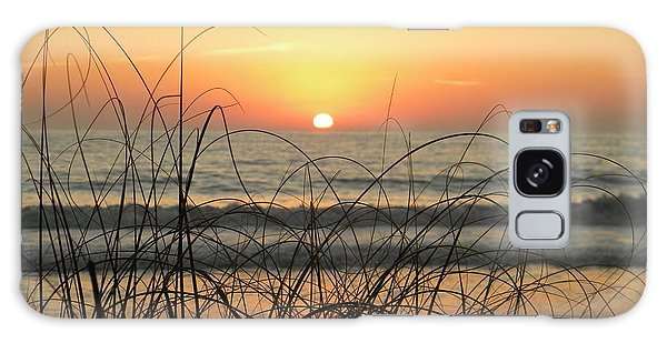 Sunset Sea Grass Galaxy Case