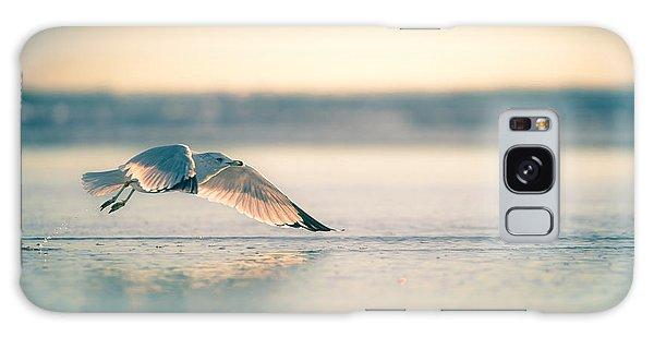 Sunset Seagull Takeoffs Galaxy Case