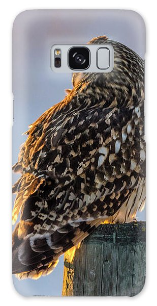 Sunset Short-eared Owl Galaxy Case