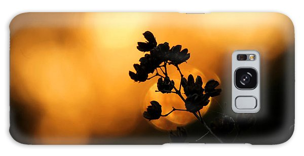 Sunset Silhouette Of Foliage Galaxy Case