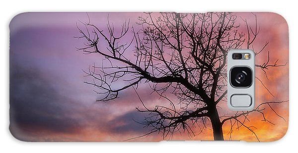 Galaxy Case featuring the photograph Sunset Tree by Darren White