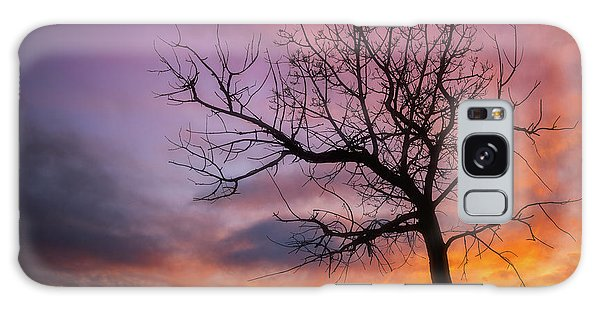 Sunset Tree Galaxy Case by Darren White