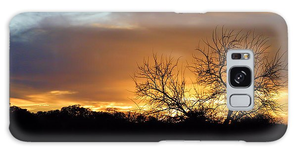 Sunset With Tree Silhouette Galaxy Case by Linda Phelps