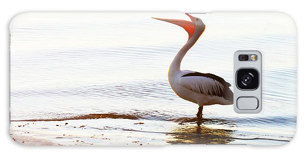 Sunshine Coast Pelican Galaxy Case