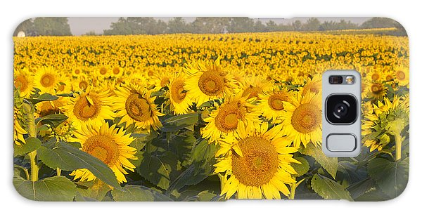 Sunshine Flower Field Galaxy Case